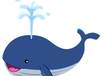 The Whale's Adventure
