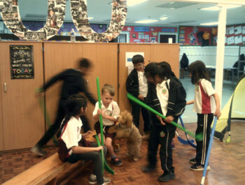 PE lessons with Saffy our school dog.