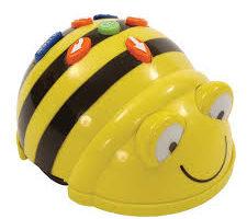 Bee Bots, Programming & Algorithms