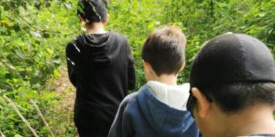 Mental Health Week-A walk in Nature and a Bug Hunt!