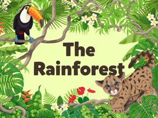 Rainforest Explorers