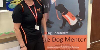 Dog Mentor Assembly